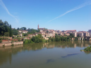 A view of Albi.