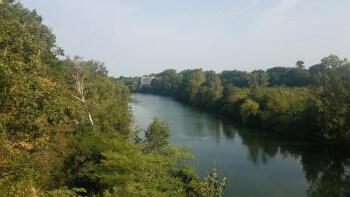 Verdant river Tarn.